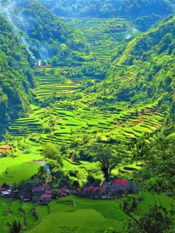 Philippines rizières de Banga-An