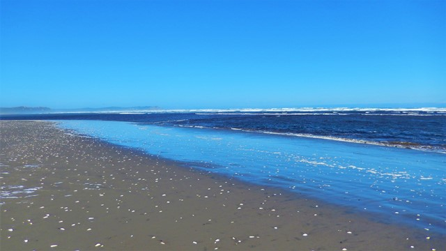Chili Isla Chiloé Parc National