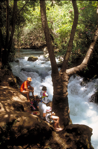 resting by the Banias River
