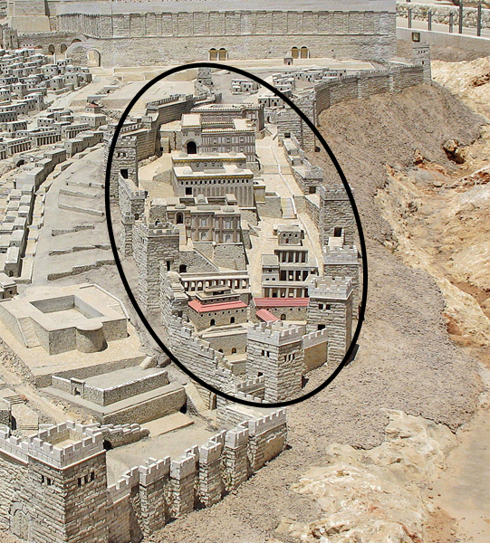 The City of David (circled) in a scale model of ancient Jerusalem. It stood alone on that ridge during David's time. His palace, yet to be excavated, is at the north end of the city. Solomon extended the walls north of the palace and built the First Temple atop Mount Moriah, known since as the Temple Mount.