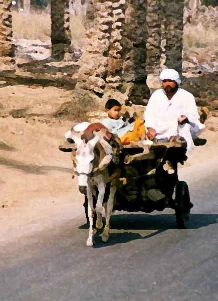 donkey cart in the Nile Valley, Egypt