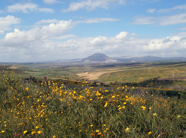 Jezreel Valley with Mt. Tabor in the background