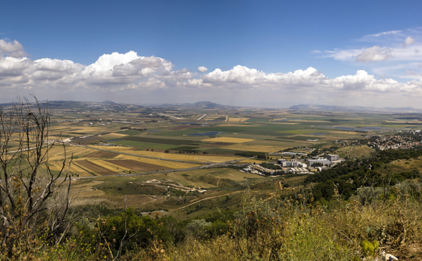 the Jezreel Valley from Mt. Carmel