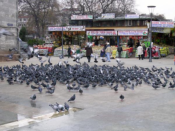 the Egyptian Spice Bazaar, Istanbul