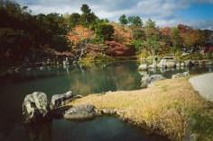 這就是有名的曹源池了!有八百年的歷史,依然維護得很好。