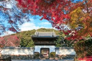 仏徳山 興聖寺