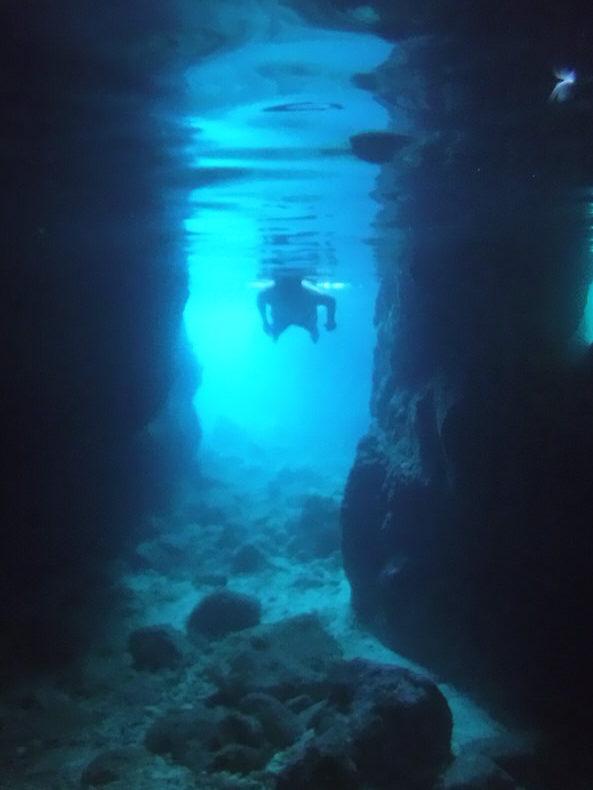 Under the Sea Malta