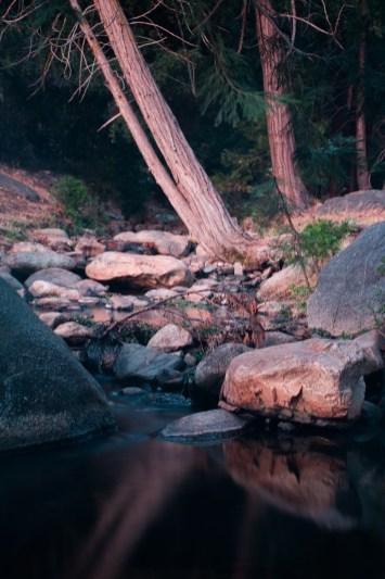 Sequoia Nationa Park