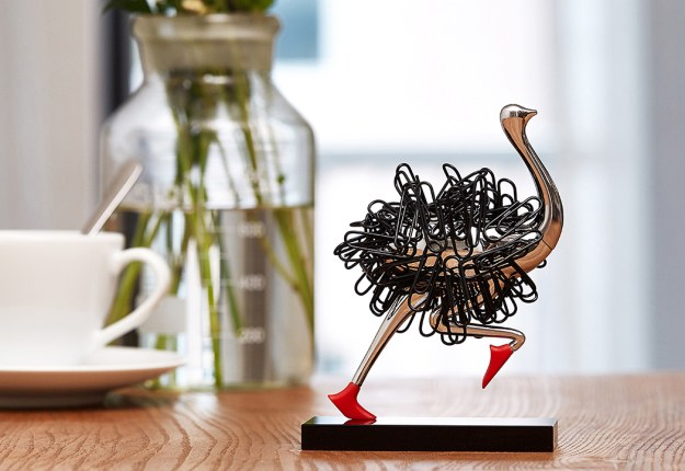 ostrich_03 Office supplies? No. Ostrich supplies? Yes! Design