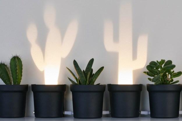 cactus_lamp YD Design Storm #8 Design