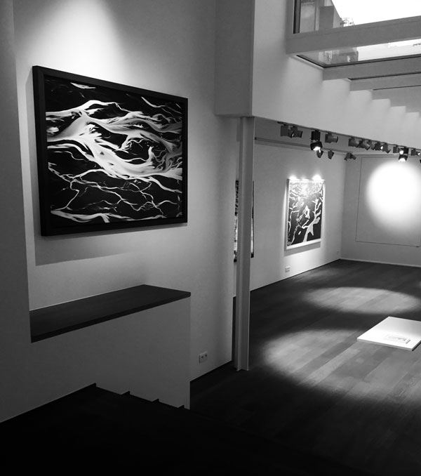 YANN ARTHUS BERTRAND PHOTO Representation Galeries Et