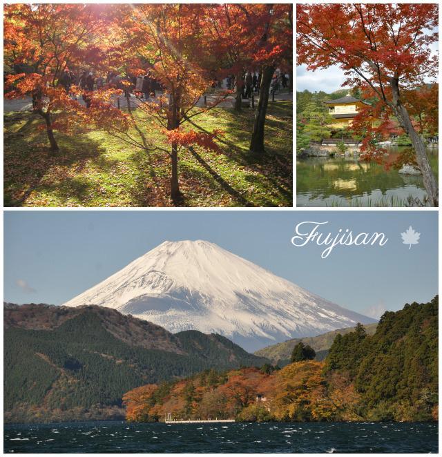 Mont Fuji - L'automne au Japon