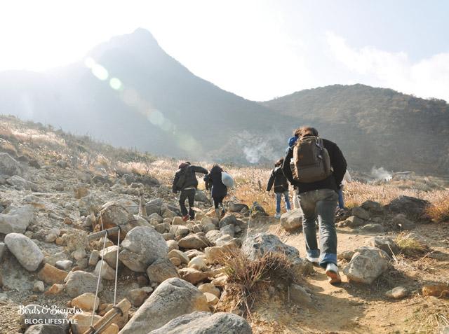 Balade sur le Mont Kami à Owakudani