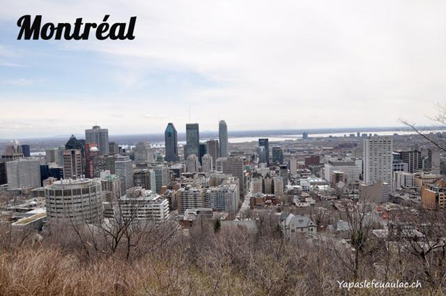 Vue de Montréal depuis le MontRoyal_mini