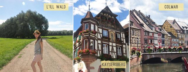 Que faire en Alsace autour de Kintzheim?