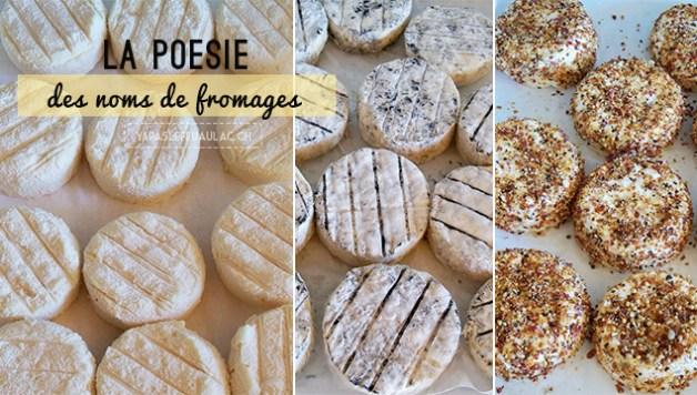 Fromages de chèvre français