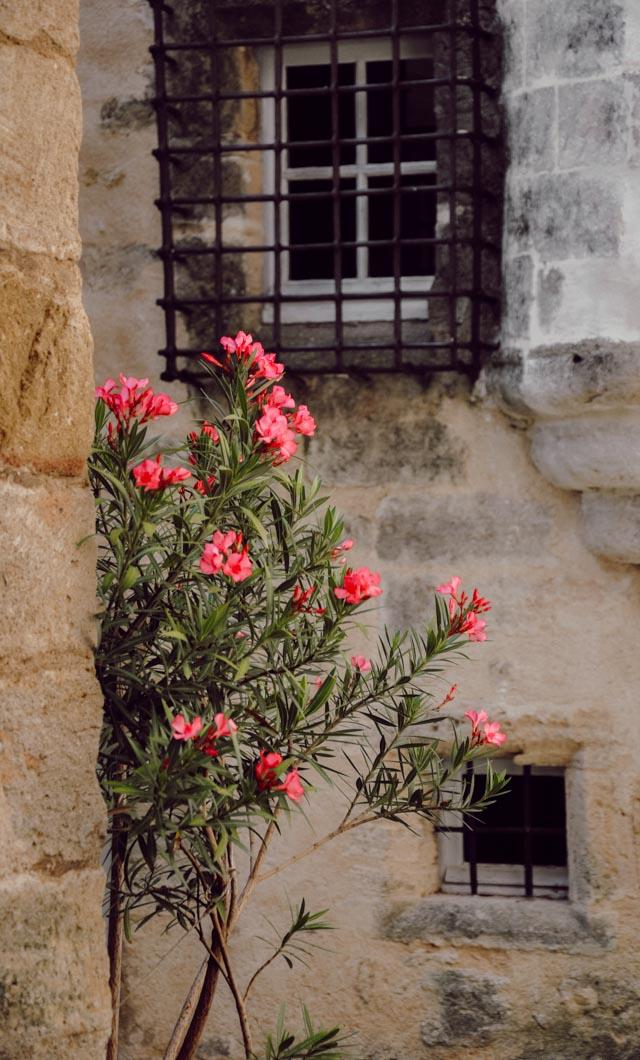 Jolies ruelles de Cucuron en Provence