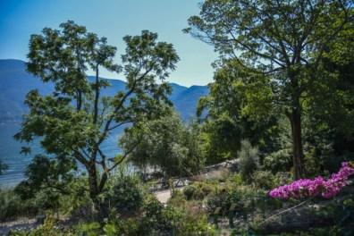 jardin-botanique-tessin-ile-brissago-29