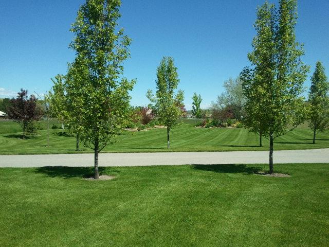 landscaping utah