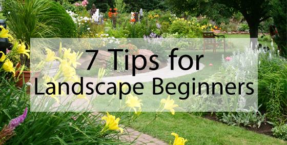 7 Tips for Landscaping Beginners - Landscape Edging Blog on Basic Landscaping  id=88988
