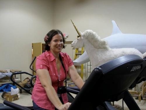 Gym with Unicorn