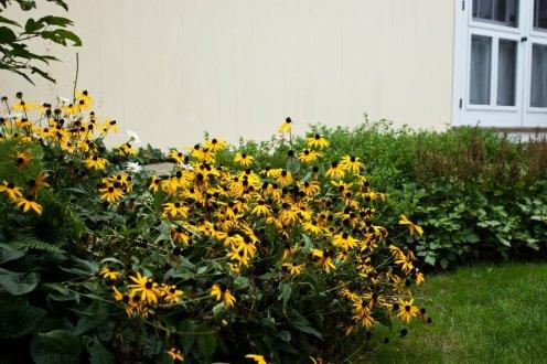 ornamental garden Washington CT