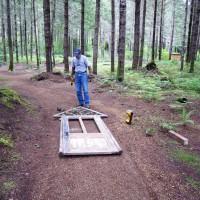 Landscaping Ideas Gt Forest Gardening PART II