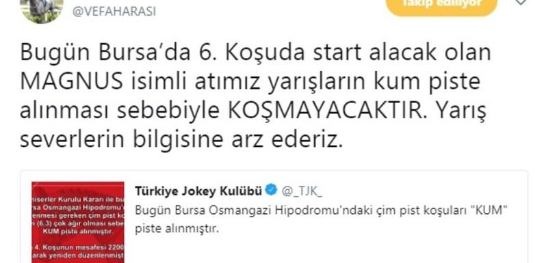 Bursa'da Favori Tay Start Almayacak!