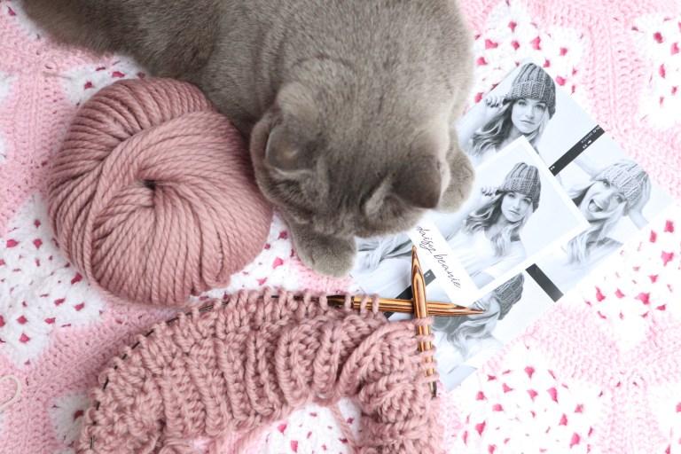 Katze, Wolle, Stricknadeln, Strickmütze, Rowan, Daisy Beanie