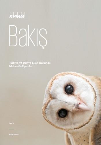 kpmg_bakis