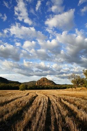 Fotoğraf: Joe Gough / Australia New South Wales