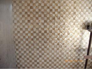 珍珠貝殼板每片兩千多塊只有一尺乘四尺
