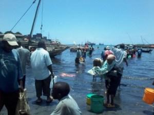Tanzania-Stonetown-Zanzibar-Vissershaven