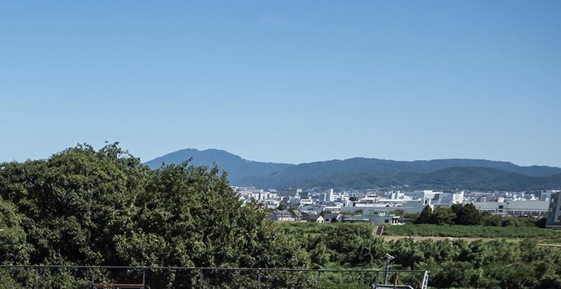 ヤスダモデル社屋からの風景(桂川河岸)
