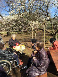 20150311小金井公園へ梅を見に散歩に出掛けました。7