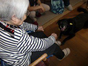 20151031月一恒例のドッグセラピーが行われました!
