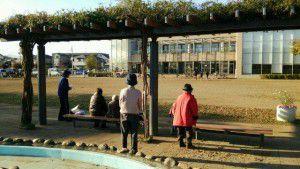 20141117清瀬の神山公園で散歩4