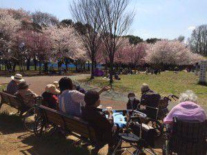 20150403学園もお花見に行ってきました!3