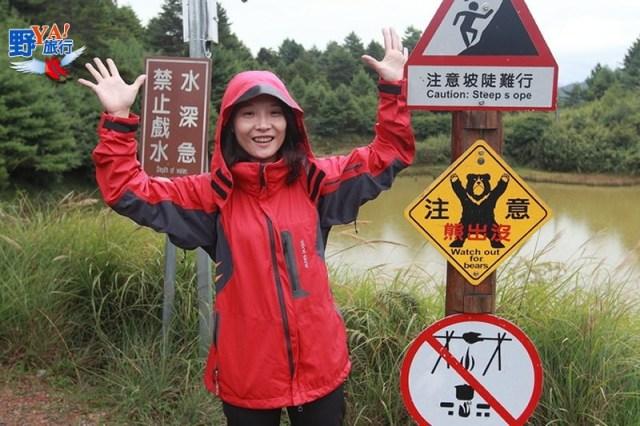 小心熊出沒-台灣黑熊現身瓦拉米步道 @YA !野旅行-吃喝玩樂全都錄