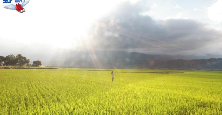 全台最長的縣道193線,有多特別走過就知 @YA 野旅行-陪伴您遨遊四海