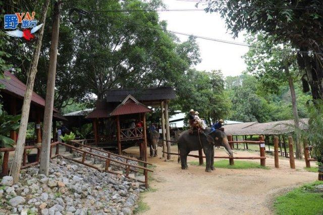 泰國唯一的大象養老院 @YA 野旅行-陪伴您遨遊四海