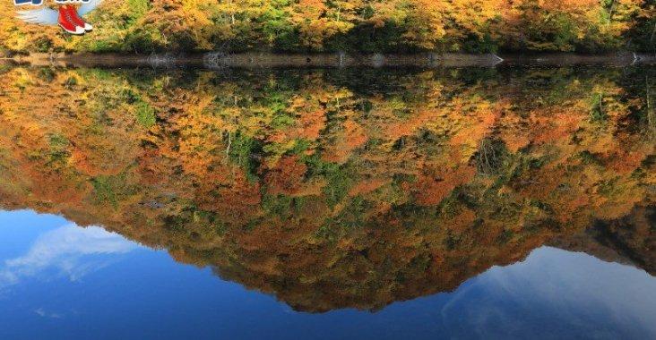 五能線傳統文化巡禮,世界遺產白神山地十二湖 @YA 野旅行-陪伴您遨遊四海