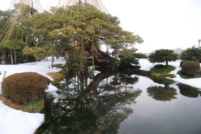 賞金澤兼六園雪景 品嚐超浮誇金箔冰淇淋 @YA 野旅行-陪伴您遨遊四海