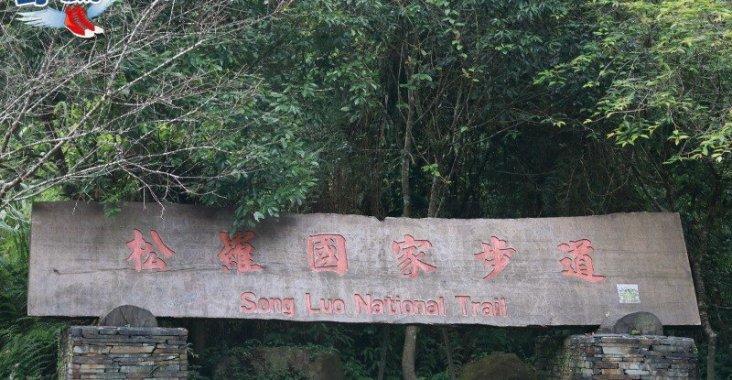 泰雅部落世外桃源 生態豐富的松羅國家步道 @YA !野旅行-玩樂全世界