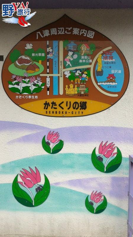 自駕東北八幡平賞雪牆,悠遊秋田內陸線豬牙花海 @YA !野旅行-吃喝玩樂全都錄