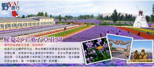 悠遊北疆壯麗風情 擁抱紫色浪漫薰衣草園 @YA !野旅行-吃喝玩樂全都錄