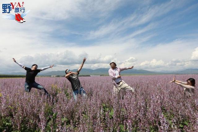 新疆|昭蘇 天馬故鄉-昭蘇 夏日北疆魅力無限 @YA !野旅行-玩樂全世界