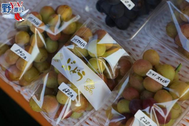 日本|山形 秋日東北風光迷人 觀光果園採果吃到飽 @YA !野旅行-吃喝玩樂全都錄