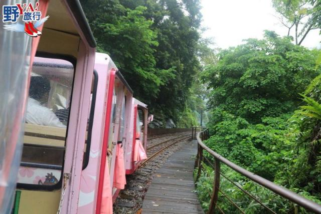 台北|烏來 泡暖湯內洞瀑布散策 烏來溫泉體驗泰雅風情 @YA !野旅行-玩樂全世界