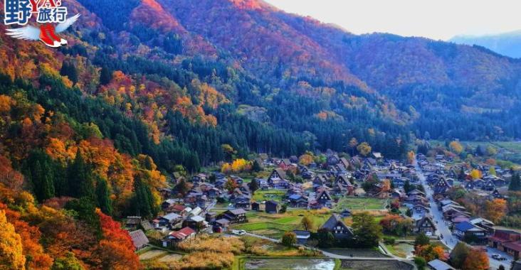 日本|北陸 白川鄉合掌村楓紅片片 無敵浪漫場景此生必訪 @YA 野旅行-陪伴您遨遊四海
